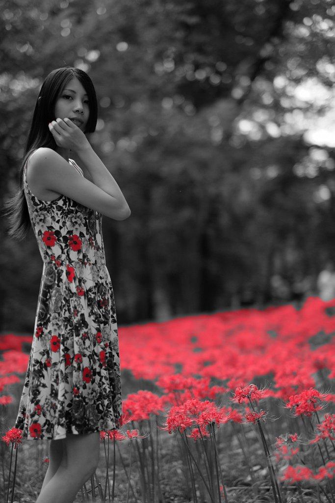 白と黒と赤と