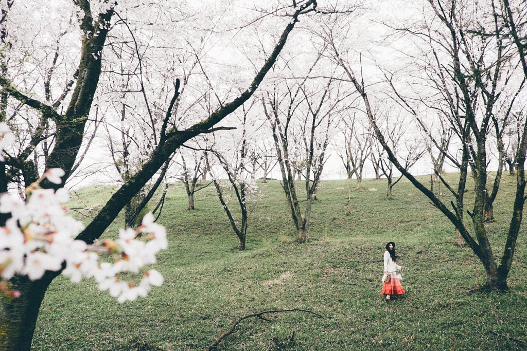 20150409-sakura-007.jpg