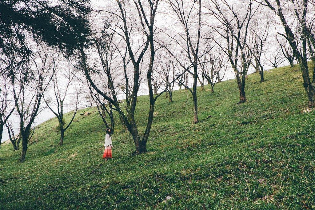 20150409-sakura-008.jpg