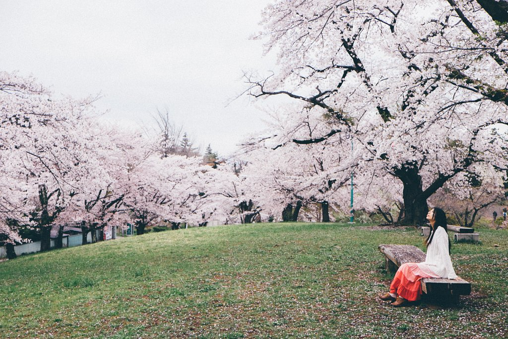 20150409-sakura-017.jpg